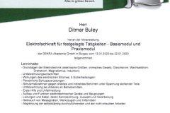 Roma - Elektrofachkraft für festgelegte Tätigkeiten - Basismodul und Praxismodul 2020 Ditmar Buley